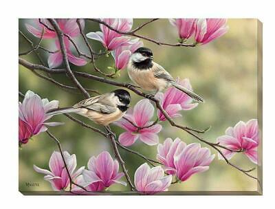 Chickadees & Spring Magnolias Wrapped Canvas by Rosemary Millette