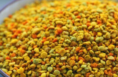Fresh BEE POLLEN Pure Granules 100% Natural Raw Flower Polen from Russia