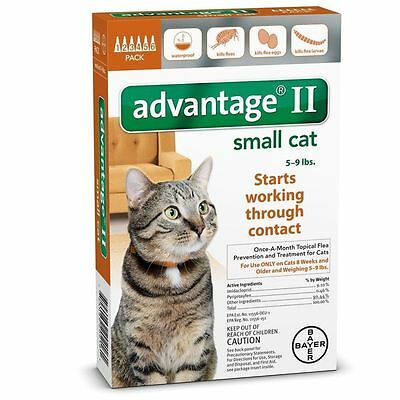 Bayer Advantage II Flea and Tick Treatment for Cat - Pack of 6 (81520216)