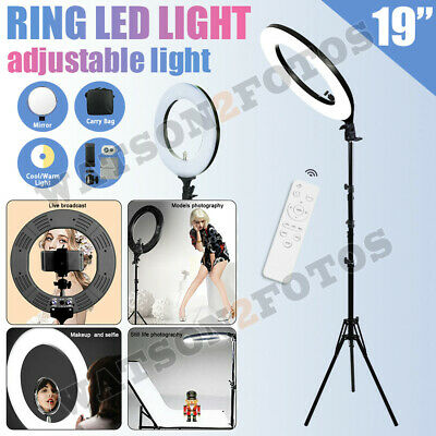 19''LED SMD Ring Light Kit 5500K Dimmable Diva With Stand Continuous Lighting US