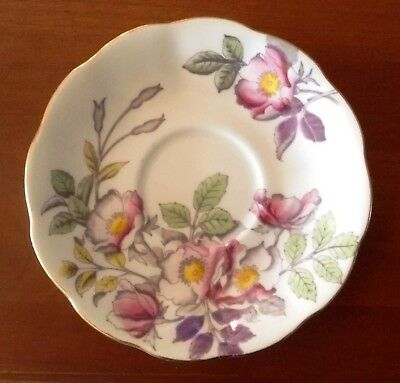 Royal Albert Handpainted Saucer for Flower of the Month Dog Rose #2 - England