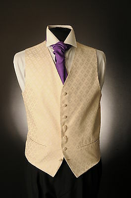 W-1071 Beige With Lilac Detail Wedding Waistcoat Formal/Dress/Wedding/Suit