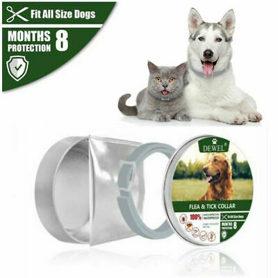 Dewel Flea & Tick Collar for Small large dogs,Up to 18lbs 8 Month Protection F5