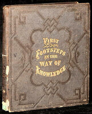 First Footsteps In The Way Of Knowledge / 1860 #276068
