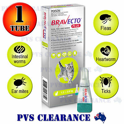 Bravecto Plus Spot On for Small Cats - Green 1.2-2.8 kg - Flea & Tick Kitten