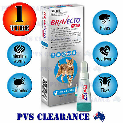 Bravecto Plus Spot On for Medium Cats - Blue 2.8-6.25 kg - Heartworm Cat