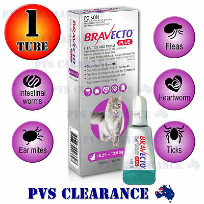 Bravecto Plus Spot On for Large Cats - Purple 6.25-12.5 kg - Flea & Heartworm