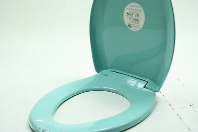 Pleasant Bemis 1200Slowt 043 Elongated Plastic Slow Close Toilet Seat Onthecornerstone Fun Painted Chair Ideas Images Onthecornerstoneorg