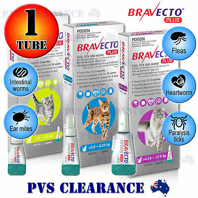 Bravecto Plus Spot On for All Size Cats - Green Blue Purple - Flea & Tick Kitten