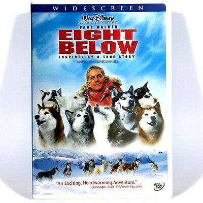 Eight Below (DVD, 2006, Widescreen, Disney) Brand New !  Paul Walker Jason Biggs