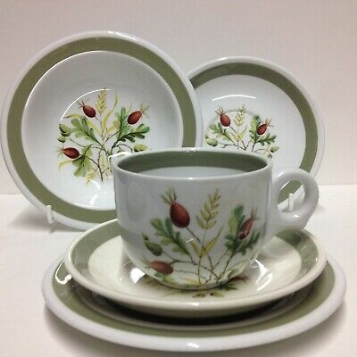 Selection of vintage Alfred Meakin Greenwood trio, bowls and saucers.
