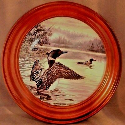 Birds of the North Morning Light Common Loons, Duck 1991 Framed Collectors Plate