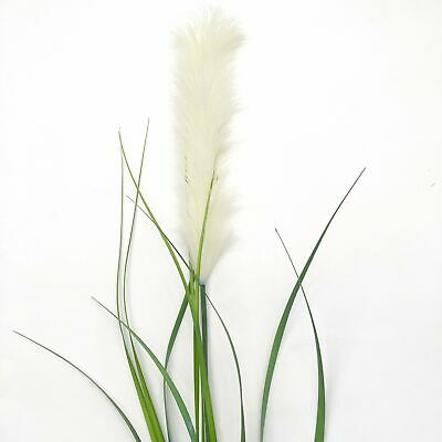 Artificial Pampas Grass Bush - White