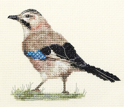 JAY ~ Garden Bird ~ Full counted cross stitch kit with all materials