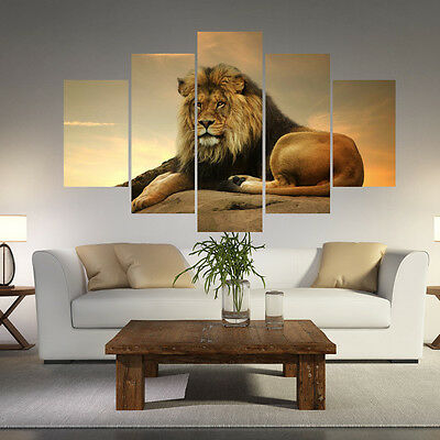 5pcs Unframed Modern Animals Lion Picture Wall Art Decor Oil Painting on Canvas