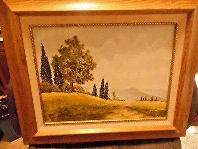 Landscape framed & Signed Acrylic Impressionist Painting on Canvas. D.Wallace