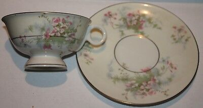 Teacup and Saucer Theodore Haviland Apple Blossom Bone China Floral Design
