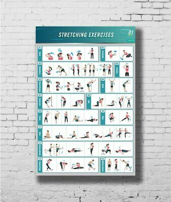 W433 Art Stretching Exercise BodyBuilding Guide Gym Chart Poster