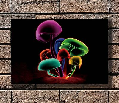 H802 Psychedelic Trippy Magic Mushroom Abstract Print 20x30 24x36in Silk Poster