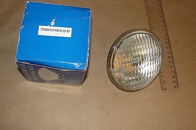 LIGHTING 25PAR36/CAP/WFL30/12V/STHalogen Sealed Beam Floodlight,PAR36