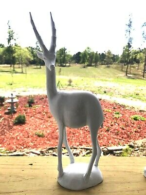 Wood white wild animal curious gazelle looking left vintage