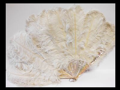 Fächer-Perlmutt+Straussenfedern-ca.1920-fan-mother of pearl+ostrich feathers
