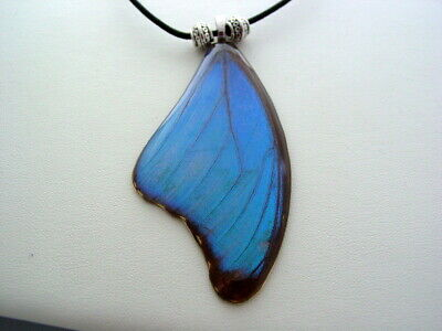 Electric Blue Morpho Hindwing Real Butterfly Wing Necklace (bm7a)