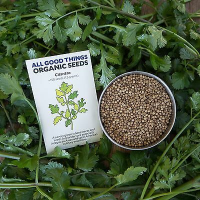 Cilantro / Coriander Seeds (~150): Certified Organic, Non-GMO Heirloom Seeds