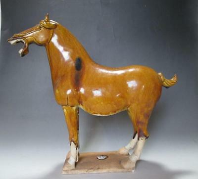 T6006 Tang three-color Pottery Big Horse Statue Inner Mongolia China shape Horse