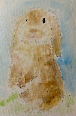 Original Signed Watercolour ACEO Painting Drawing Easter Bunny RABBIT ⭐