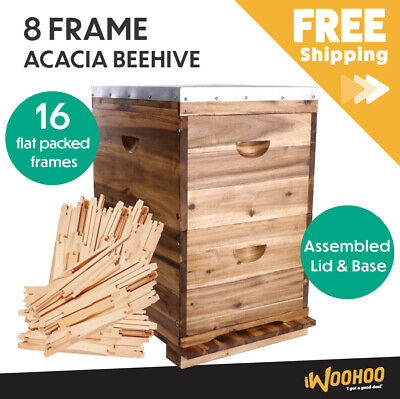 16 Frame Double Beehive 16 x Frames Brood Bee Box NZ Pine Bee Hive Honey Bee