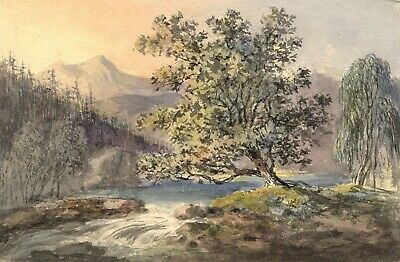Tree by Mountain Stream - Original early 19th-century watercolour painting