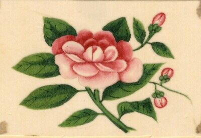 Pink Peony Pith Painting - Original early 19th-century watercolour painting