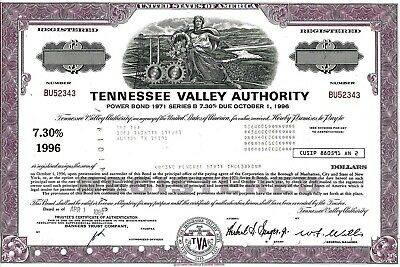 Tennessee Valley Authority, 1989, 7,30% Power Bond Ser. B due 1996 (560.000$) !