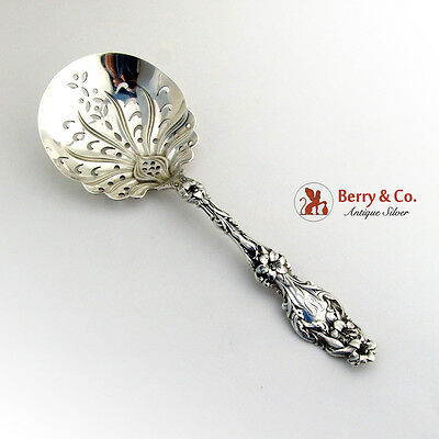 Lily Large Pea Serving Spoon Pierced Bowl Whiting Mfg Co Sterling Silver 1902