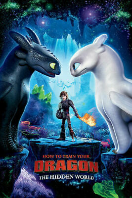 HOW TO TRAIN YOUR DRAGON 3: THE HIDDEN WORLD - MOVIE Art Silk Poster 12x18 24x36