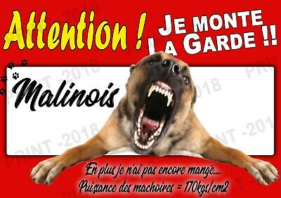 "AFFICHE ""ATTENTION AU CHIEN"" DOGS  21x30 cms - MALINOIS 2 - Berger Belge"
