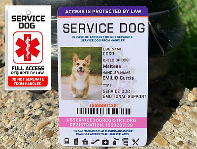 ADA ESA Service Dog Card Id Assistance Animal Badge + Collar Tag Emotional