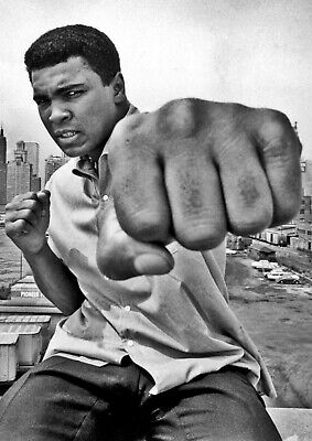 Muhammad Ali Cassius Clay Art Print Photo Print Poster Picture Boxing