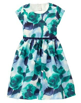 NWT Gymboree Fun and Fancy Watercolor Flower Dress Christmas Girl 4 5 6 10