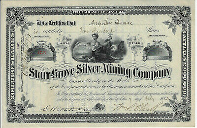 NEVADA1882 Starr-Grove Silver Mining Company Stock Certificate Lewis District