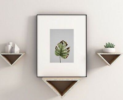 Green Plant Minimalist Grey Box Stylish Abstract Gallery Wall Art Poster Print
