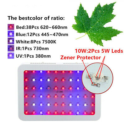 Greenhouse LED Grow Light Full Spectrum Indoor Hydroponics System Flower Plants