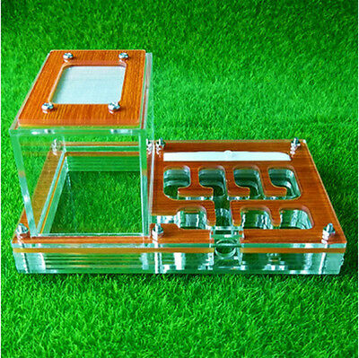 ANT FARM  NEW form of education - ants nest ant castle gift natural