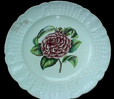 COPELAND SPODE Signed A Ball Camelia Pink / Red 9 3/4 in Plate c1925