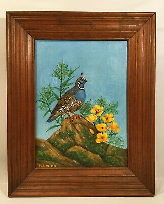 Vintage oil painting. California quail and poppies. Signed N, Young.