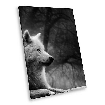 A463 Black White Animal Portrait Canvas Picture Print Large Wall Art Wolf Forest