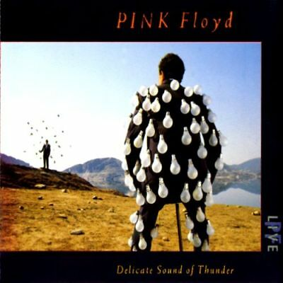 Pink Floyd  ### Delicate Sound Of Thunder - Live  ### Doppel CD / Fat Box