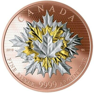 2019 5 Oz Silver $50 Canadian MAPLE LEAF LEAVES IN MOTION Coin, 24KT ROSE GOLD.