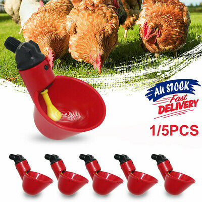 1/5pcs Automatic Cups Water Feeder Drinker Chicken Waterer Poultry Chook Bird UE